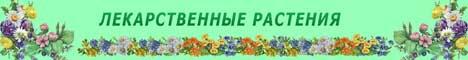 Лекарственные травы России
